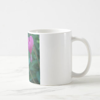 Bleeding Hearts Plant Mug