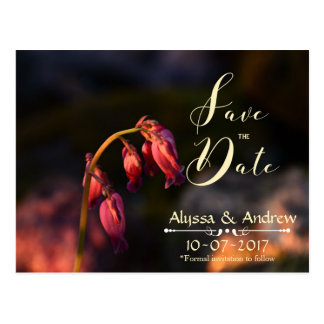 Bleeding Hearts Save the Date Cards Postcard