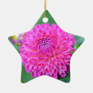 Blessed And Highly Favored Ceramic Ornament