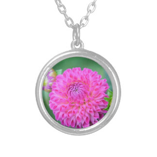 Blessed And Highly Favored Silver Plated Necklace
