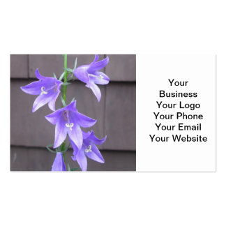 Bleu de fleur d usine de jardin de Campanula Modèle De Carte De Visite