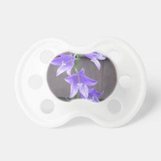 Bleu de fleur d usine de jardin de Campanula Sucette Pour Bébé