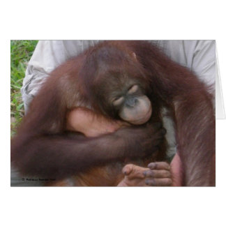 Blind Baby Orangutan Overcoming Disabilities Card