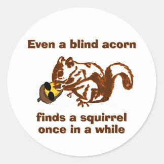 Blind Squirrel Classic Round Sticker