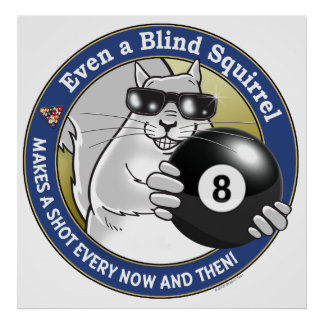 Blind Squirrel Pool Poster