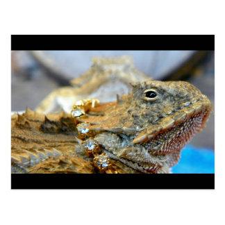 Bling... Bling...Now That's A Regal Lizard... Postcard