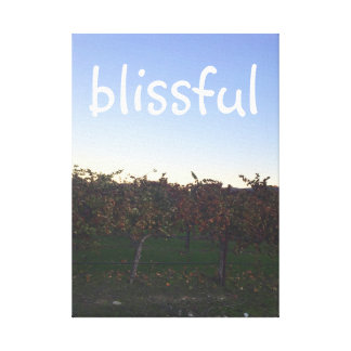 Blissful Motivational Quote Winery Photograph Canvas Print