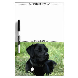 Blk Labrador Retriever Decorative Dry Erase Board