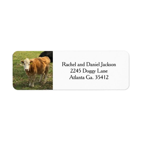 Blonde Cow Address Labels