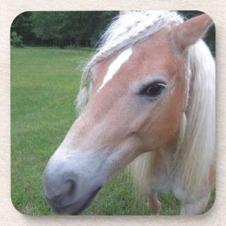 BLONDE HORSE COASTER