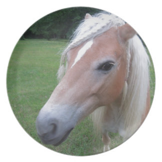 BLONDE HORSE PLATE