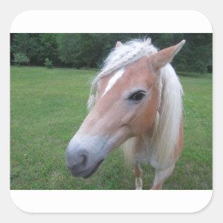 BLONDE HORSE SQUARE STICKER