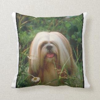 Blonde Lhasa Apso Pillow