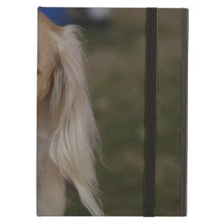 Blonde Saluki Dog iPad Air Cases