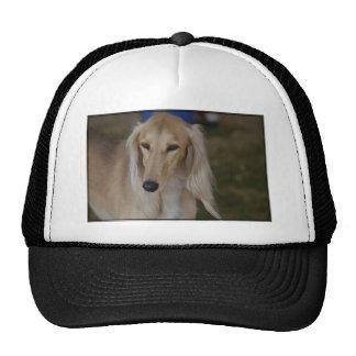 Blonde Saluki Dog Trucker Hat