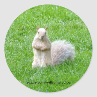 Blonde Squirrel Classic Round Sticker