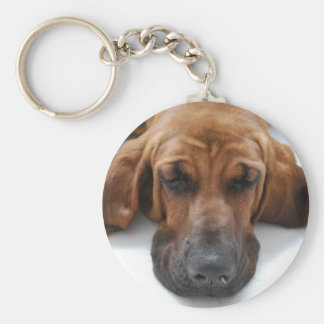 Blood Hound Basic Round Button Keychain