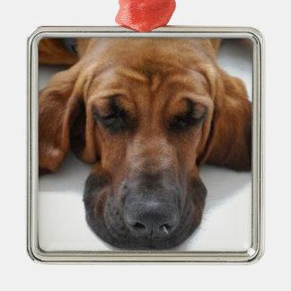 Blood Hound Silver-Colored Square Ornament