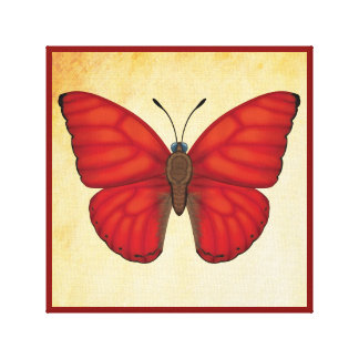 Blood Red Glider Butterfly Canvas Print