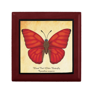 Blood Red Glider Butterfly Gift Box
