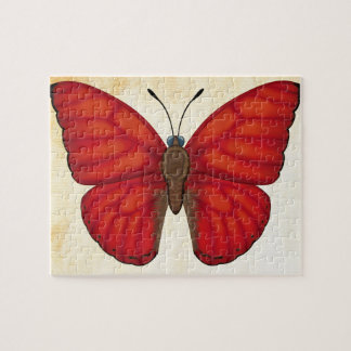 Blood Red Glider Butterfly Puzzle