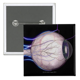 Blood Vessels of the Eye 2 Inch Square Button
