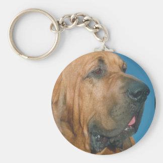 Bloodhound Basic Round Button Keychain
