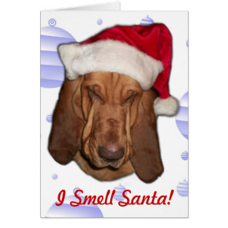 Bloodhound Christmas Card