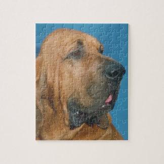 Bloodhound Dog Puzzle