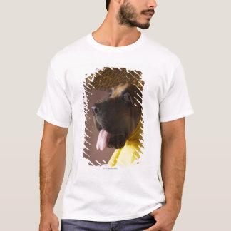 Bloodhound dog. T-Shirt