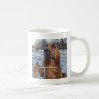 Bloodhound Face Coffee Mug