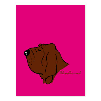 Bloodhound head silhouette postcard