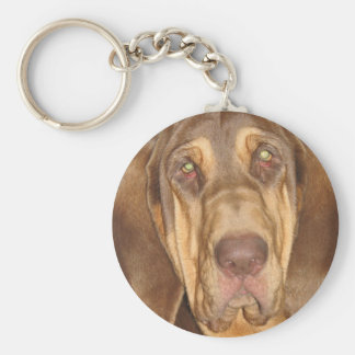 Bloodhound Photograph Keychain