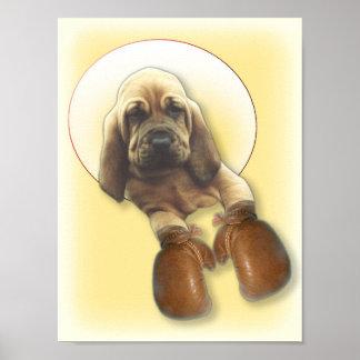 Bloodhound Puppy Boxer Poster