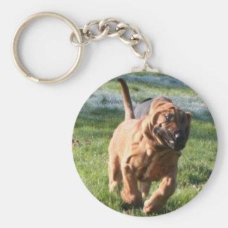 bloodhound running basic round button keychain
