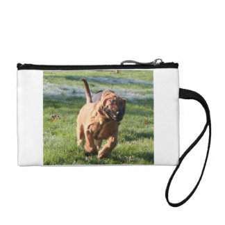 bloodhound running coin wallets