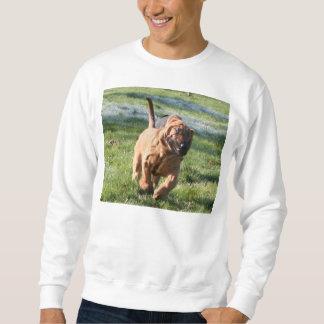 bloodhound running sweatshirt