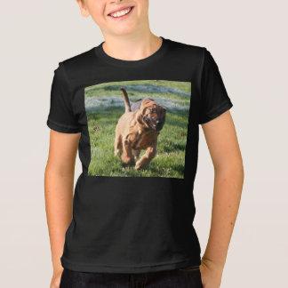 bloodhound running T-Shirt