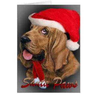 Bloodhound  Santa Paws cards