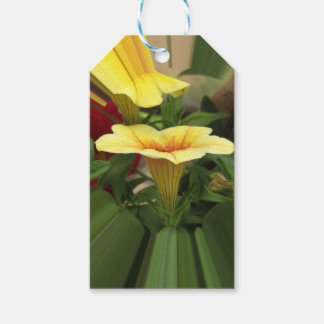 Bloom cups gift tags