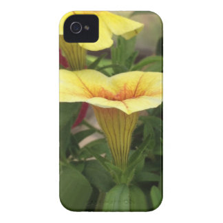 Bloom cups iPhone 4 covers