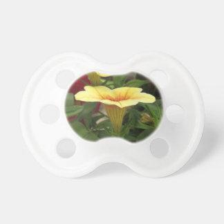 Bloom cups pacifier