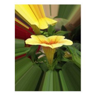 Bloom cups postcard