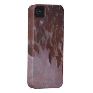 Bloom iPhone 4/4S Case