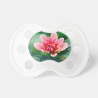 bloom pacifier