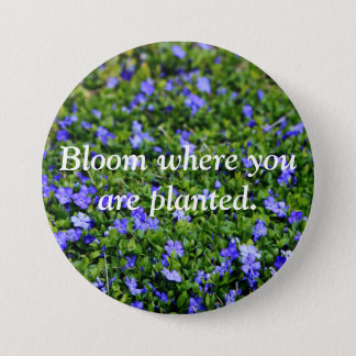 Bloom where you are planted pin