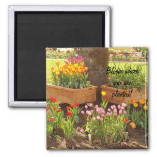 Bloom where you are planted! square magnet