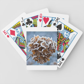 Bloom with ice crystals bicycle playing cards