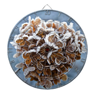 Bloom with ice crystals dartboard with darts