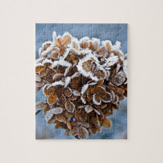 Bloom with ice crystals jigsaw puzzle